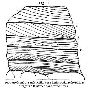 Fig. 3: Section of sand at Sandy Hill, near Biggleswade, Bedfordshire.